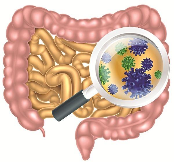 Những lợi ích sức khỏe tuyệt vời của men vi sinh
