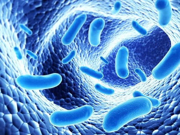 Thực hư tác dụng của nước probiotic