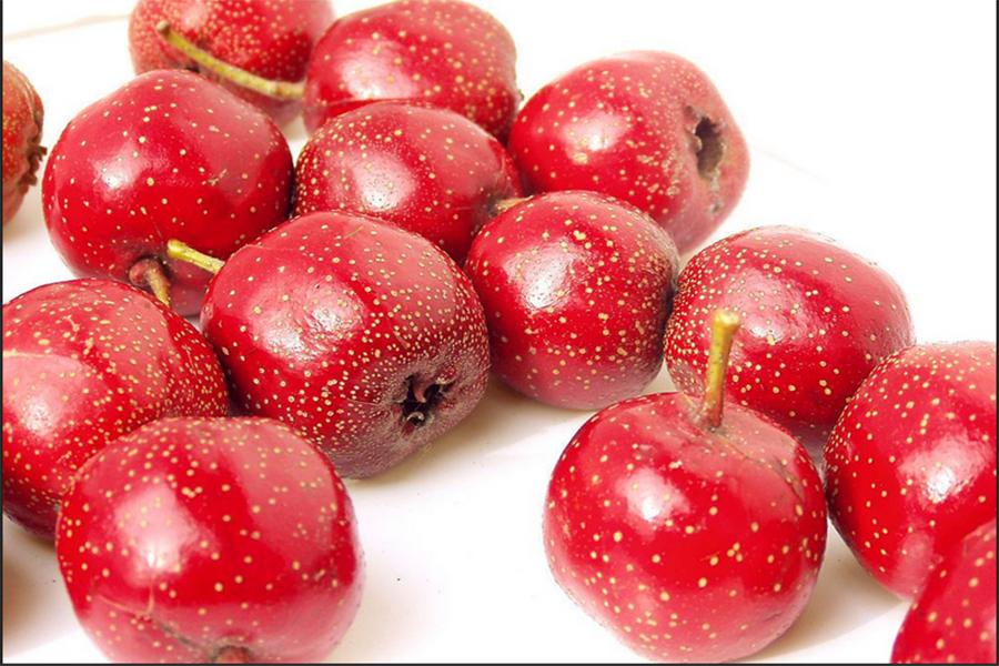 10 Lợi ích sức khỏe tuyệt vời của táo gai