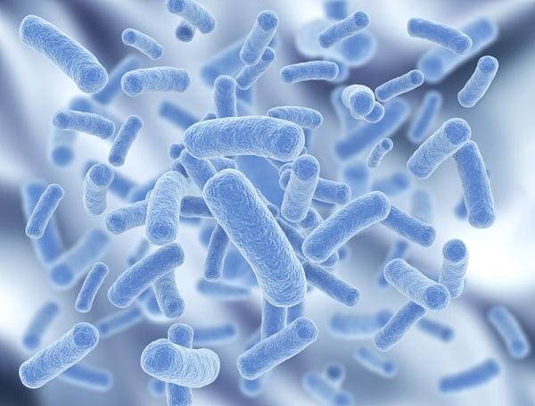 Tầm quan trọng của probiotic bạn nên biết