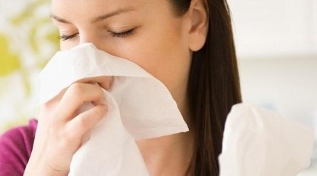 Dược liệu Xuyên tâm liên - Vị thuốc chống cúm